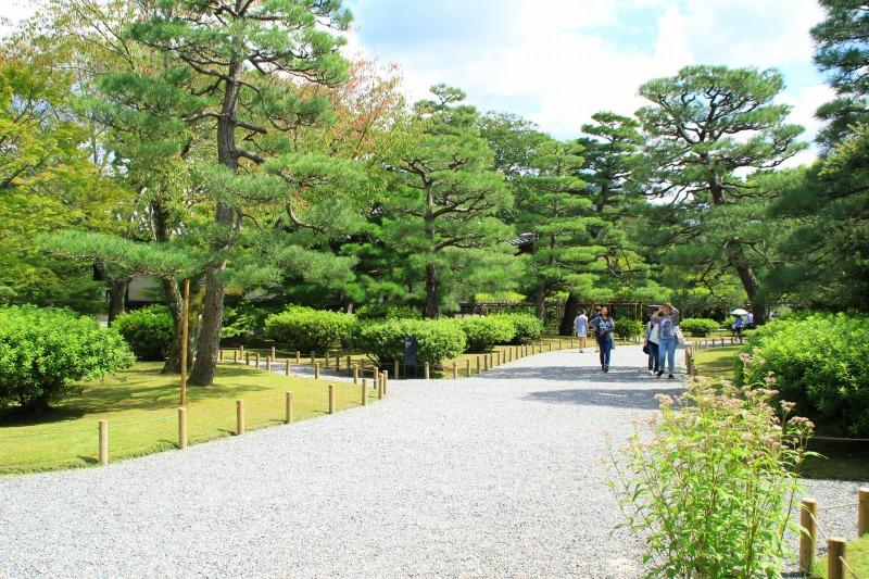 京都訪問ブログ8|平等院8