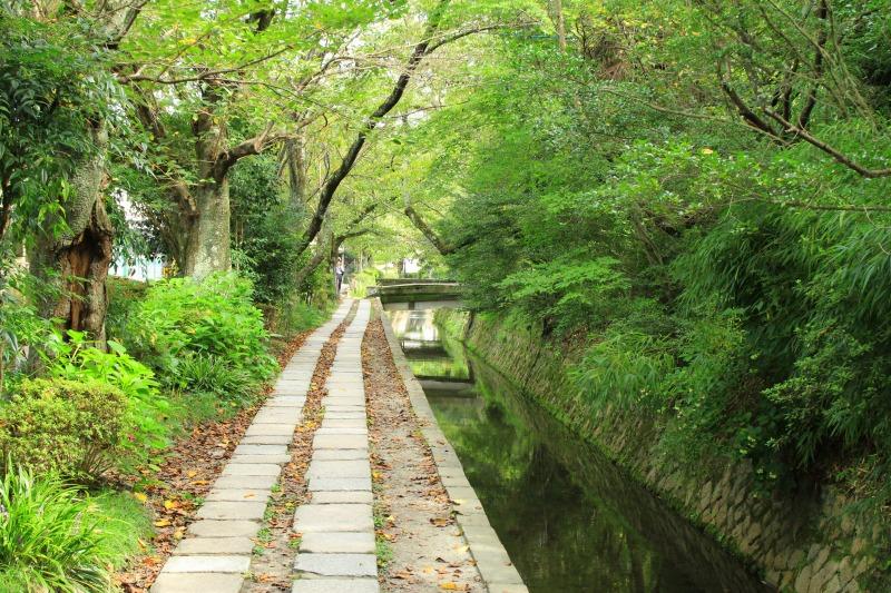 京都訪問ブログ9|哲学の道12