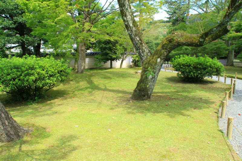 京都訪問ブログ8|平等院9