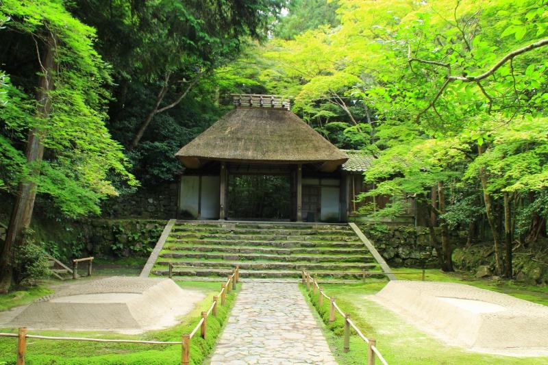 京都訪問ブログ6|法然院7