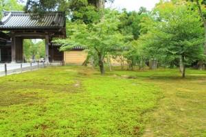 京都訪問ブログ4|金閣寺9