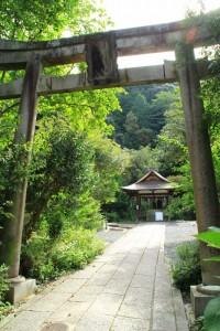 京都訪問ブログ7|大豊神社4