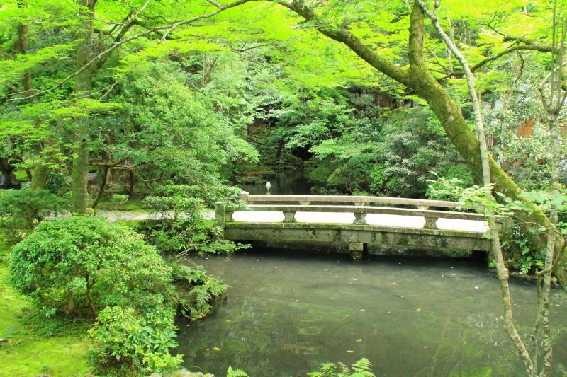 京都訪問ブログ6|法然院10