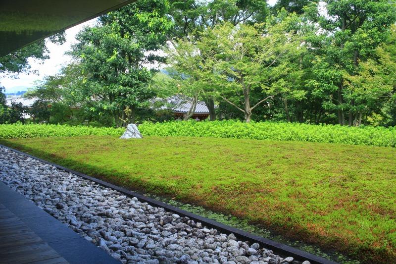 京都訪問ブログ8|平等院24