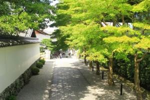 京都訪問ブログ8|平等院26