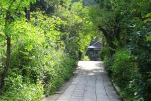 京都訪問ブログ7|大豊神社2