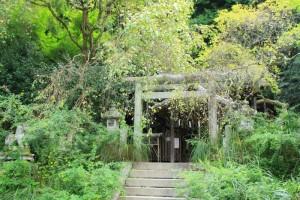 京都訪問ブログ7|大豊神社5