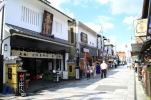 京都訪問ブログ8|平等院5