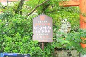 京都訪問ブログ10|宇治上神社6