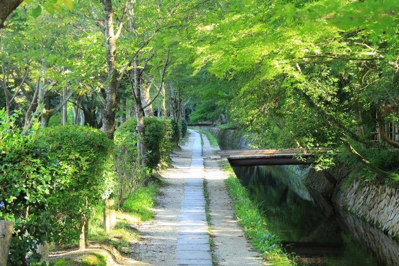 京都訪問ブログ9|哲学の道7