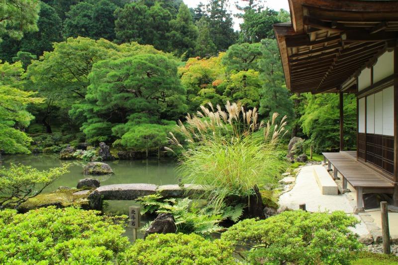 京都訪問ブログ5|銀閣寺6