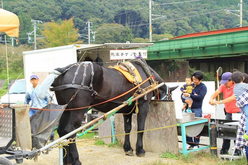 京都訪問ブログ19|京馬車10