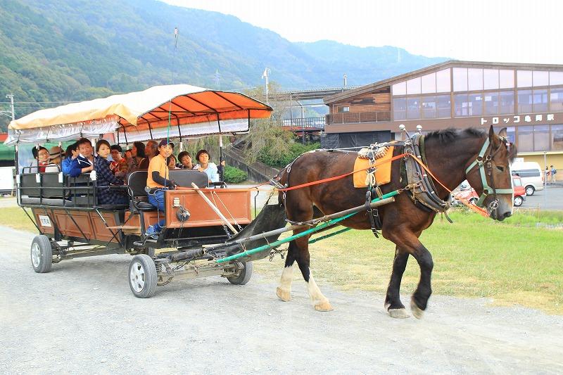 京都訪問ブログ19|京馬車15