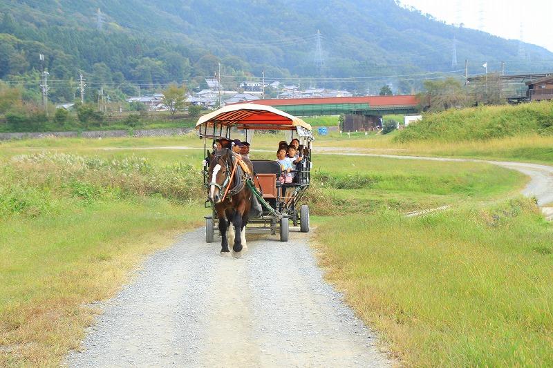 京都訪問ブログ19|京馬車20