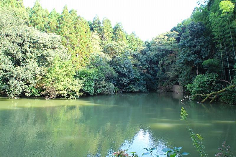 京都訪問ブログ20|伏見稲荷大社41
