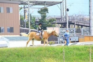 京都訪問ブログ19|京馬車7