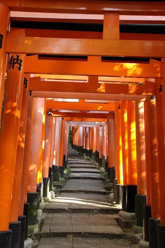 京都訪問ブログ20|伏見稲荷大社58