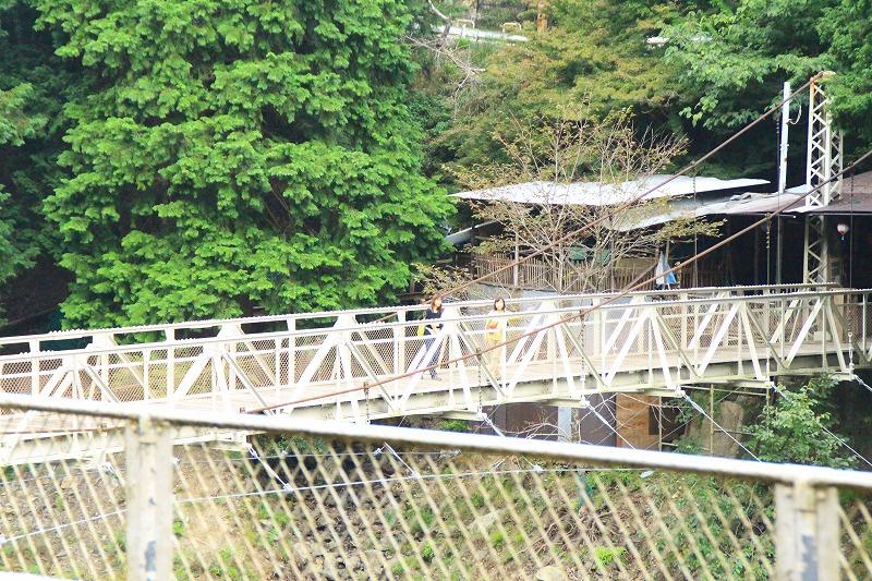 京都訪問ブログ18|嵐山トロッコ列車17
