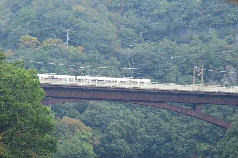 京都訪問ブログ18|嵐山トロッコ列車24