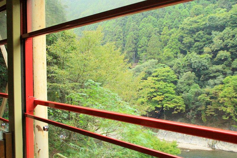 京都訪問ブログ18|嵐山トロッコ列車25