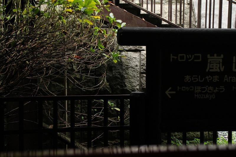 京都訪問ブログ18|嵐山トロッコ列車10