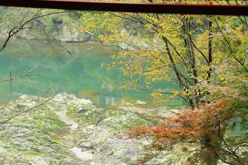 京都訪問ブログ18|嵐山トロッコ列車13