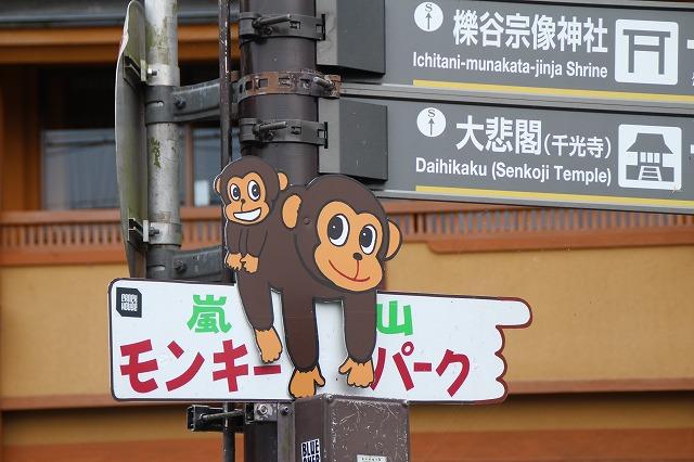 京都訪問ブログ21|嵐山モンキーパークいわたやま1