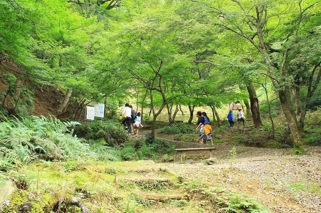 京都訪問ブログ21|嵐山モンキーパークいわたやま10