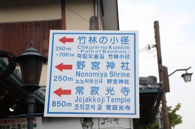 京都観光ブログ|嵐山散策10