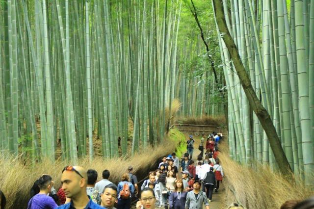京都観光ブログ|嵐山散策13