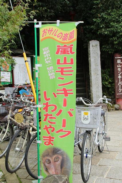 京都訪問ブログ21|嵐山モンキーパークいわたやま2