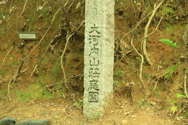 京都観光ブログ|嵐山散策15