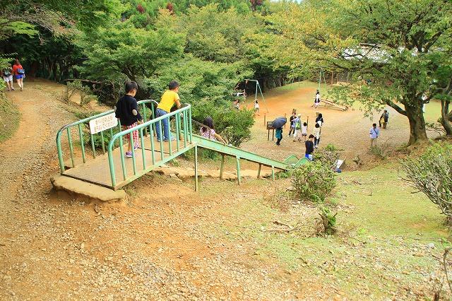 京都訪問ブログ21|嵐山モンキーパークいわたやま28