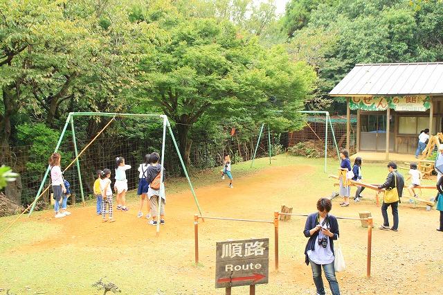 京都訪問ブログ21|嵐山モンキーパークいわたやま29