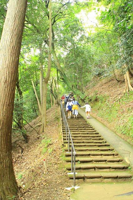 京都訪問ブログ21|嵐山モンキーパークいわたやま5