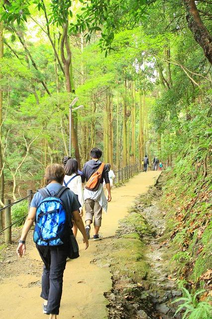 京都訪問ブログ21|嵐山モンキーパークいわたやま6