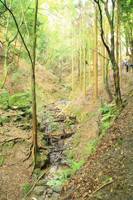 京都訪問ブログ21|嵐山モンキーパークいわたやま7