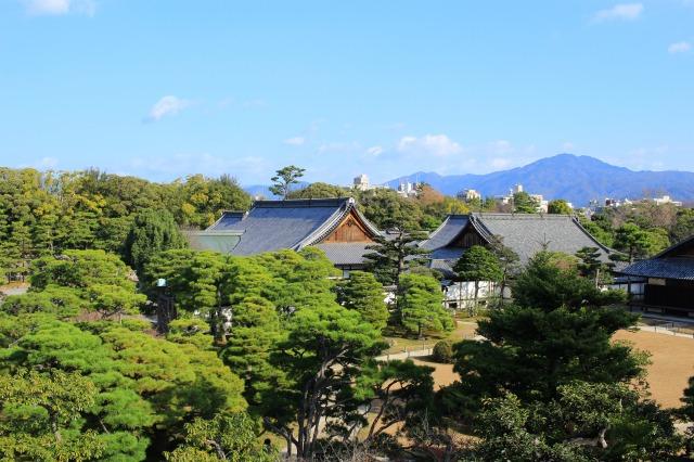 京都観光ブログ26|二条城15