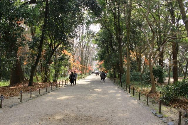 京都観光ブログ27|下鴨神社、相生社、河合神社25