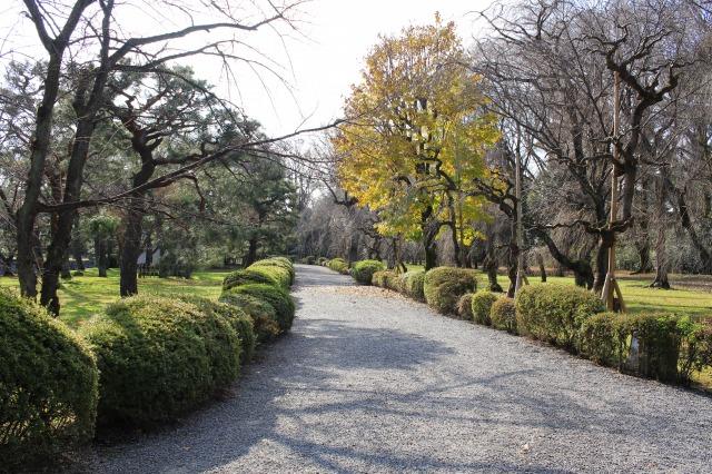京都観光ブログ26|二条城18