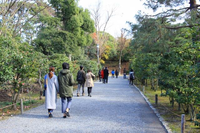 京都観光ブログ26|二条城19