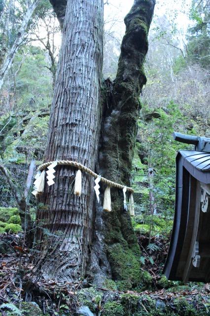 京都観光ブログ29|貴船神社34