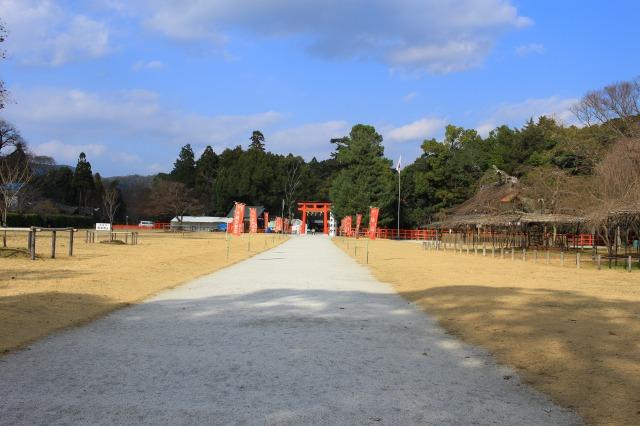 京都観光ブログ28|上賀茂神社、片岡社2