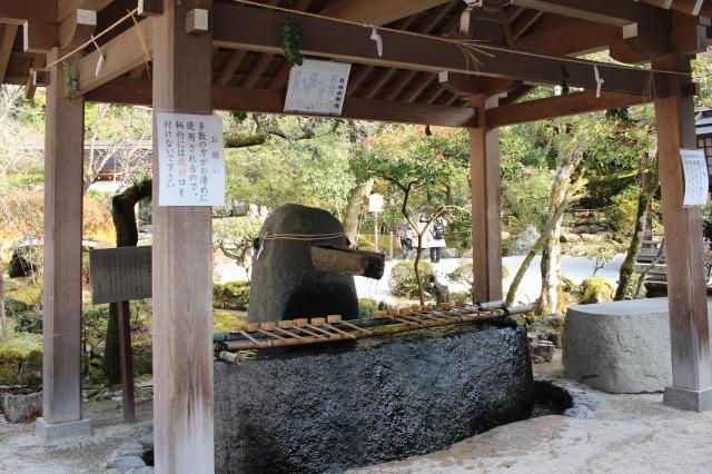京都観光ブログ28|上賀茂神社、片岡社7