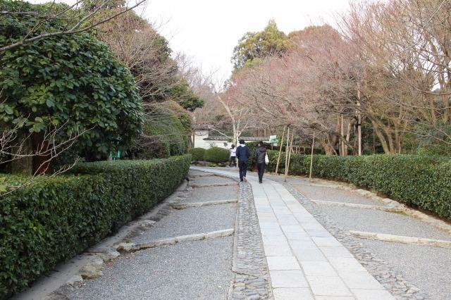 京都観光ブログ31|龍安寺1