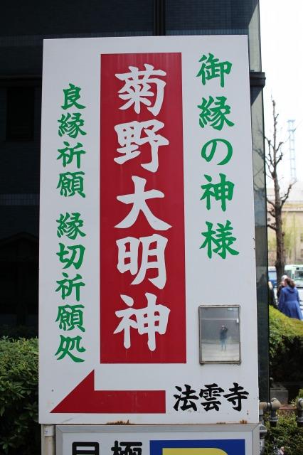 京都観光ブログ33|菊野大明神1