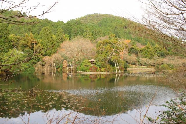 京都観光ブログ31|龍安寺16
