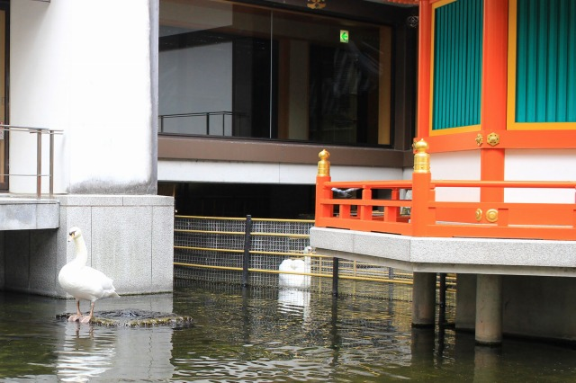 京都観光ブログ32|六角堂14
