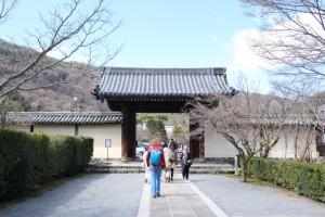 京都観光フォトブログ43|天龍寺2