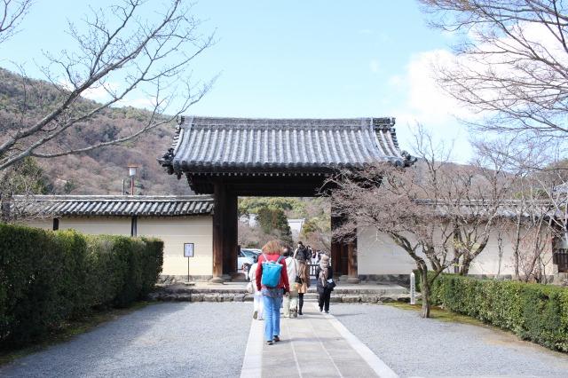 京都観光フォトブログ43 天龍寺2